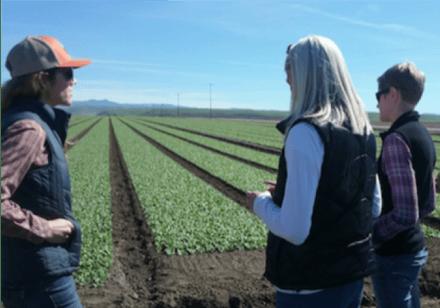 Row crop grower site visit1-1